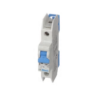Thermal Magnetic Circuit Breakers